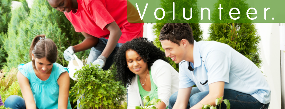essay about volunteering in the community Volunteering in the community wide ranging volunteering opportunities here are some of the most well-known types of volunteering work more information.